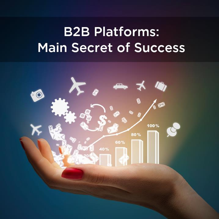 B2B Platforms, main Secret of Success